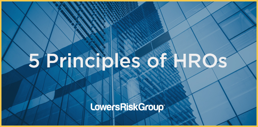 5 Principles Of High Reliability Organizations The Risk